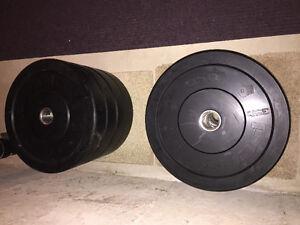 Pendlay Bumpers Plates 330 lbs Kitchener / Waterloo Kitchener Area image 1