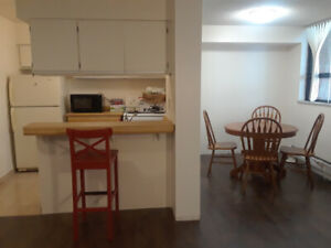 FURNISHED ONE BEDROOM CONDO DOWNTOWN TORONTO