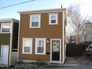 Furnished Beautiful 2 Bedroom Downtown House
