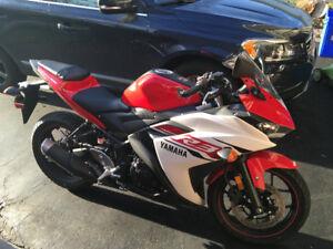 2015 Yamaha R3 for Sale