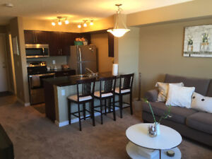 Fully Furnished Quite & Cozy 2 Bedroom  Condo Suite in SW