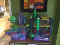 Hamster Hotel and Gym
