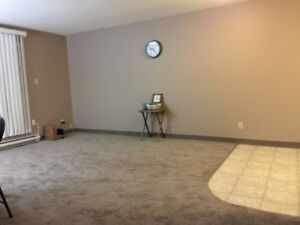 Clean/quiet 1 bedroom apartment available Feb 1