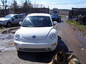 2000 Volkswagen Beetle-Classic Hatchback
