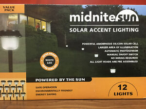 Outdoor Solar Accent Lighting
