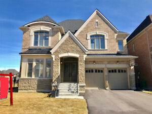 4100 Sq.Ft Luxury Home Countryside & McVean Brampton