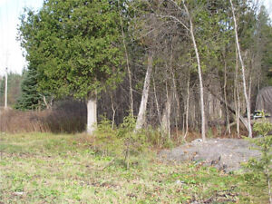 HUNTERS PARADISE, GREAT FOR HUNTING OR BUILDING Cornwall Ontario image 3