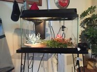 10 gallon fish aquarium with accessories and stand