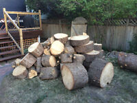 Firewood - as much as you want