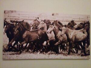 Wild Horses on Canvas