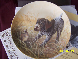 GERMAN SHORTHAIR POINTER ~ 1988 Knowles Collector Plate