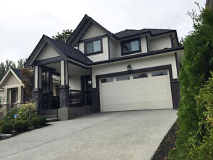 New Specious Bsmt Suite for Rent (South Surrey/White Rock)