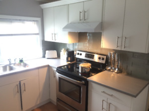 Renovated 2 bedroom apartment - St. Catharine's