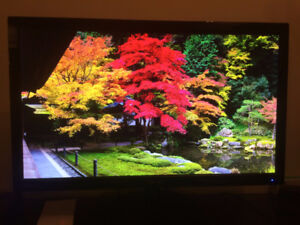 """Asus 23.6"""" 1080p Monitor (Mint Condition)"""