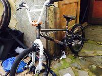 X rated hustle bmx bike
