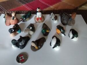 canards miniatures