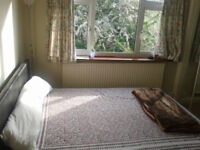 Large Spacious double bedroom to rent