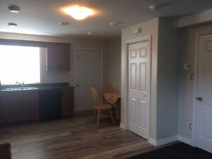 Newly renovated two-bedroom apartment in Freshwater, Placentia