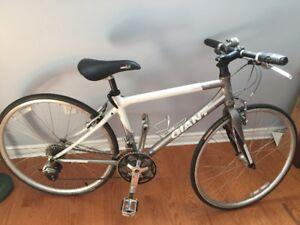 Women's Giant FCR 3W Hybrid Bike – Size 41