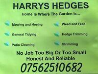 Harry gardener