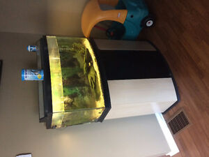 Aqarium/ fish tank bow front 40 GALLON and stand