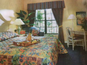 Florida timeshare for rent all yr. long