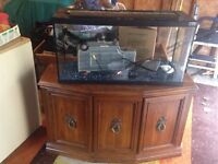 35 GALLON TANK W/ SOLID WOOD STAND