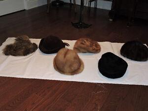 chapeau ou  étole fourrure