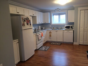 CLARENVILLE - 1 Bedroom Fully Furnished Apartment
