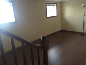 Lower Level Apartment for Rent in St. Thomas - $660 Inclusive