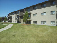 Available Now - Cornett on the Park 2 Bed