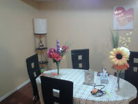 Clean 1 Bedroom+den, basement in Markham (Markham Rd/Steeles)