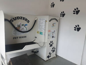 Do it yourself dog wash adopt or rehome pets in ontario kijiji self serve dog wash solutioingenieria Choice Image