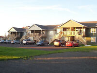 SPACIOUS WALK UP APARTMENTS FOR RENT IN SHEDIAC