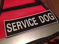 Help Support My Service Dog