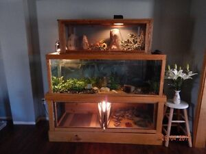 Aquarium terrarium wall unit