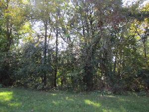 Prime Development Land for Sale - Deseronto Belleville Belleville Area image 3