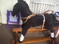 Kids Riding Horse