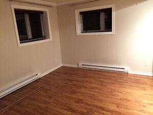 One Bedroom Apartment in Foxtrap Available December 1 St. John's Newfoundland image 5