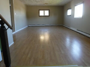 Newly renovated, bright & spacious 4 bed/2 bath apartment