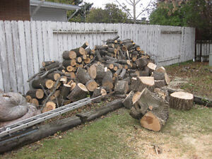 Fire Wood Regina Regina Area image 2