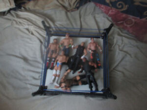 wwe figures plus le ring