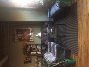FREE COUCH SET - no they don't be have bugs