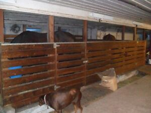 Private Barn has  stall, turnout ,Horse or pony boarding Cornwall Ontario image 3