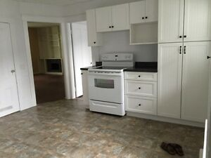 1 bedroom apt- Centrally located $700