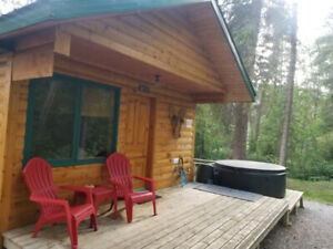 Cozy Cabin near Radium Hot Springs