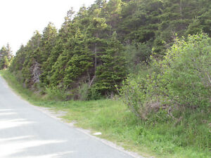 BACON COVE RD, AWESOME OCEAN VIEWS..BACON COVE.. St. John's Newfoundland image 17