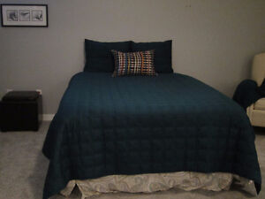 Quilted Bedspread, Bedskirt, 2 Pillowshams, 1 Accent Pillow Kitchener / Waterloo Kitchener Area image 1
