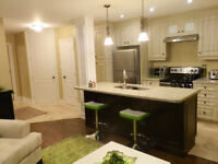 Fantastic basement apartment available for one person only