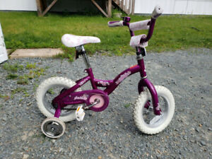 "12"" Raleigh bike with training wheels"